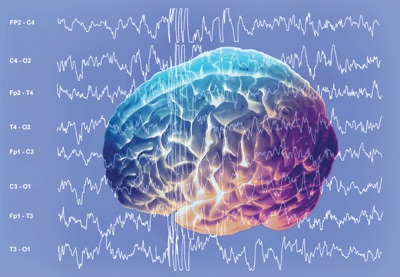 Brain wave measurement picks apart how people respond to ads