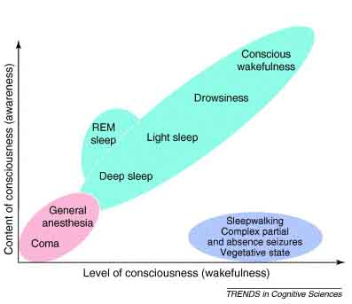 are there different levels of consciousness